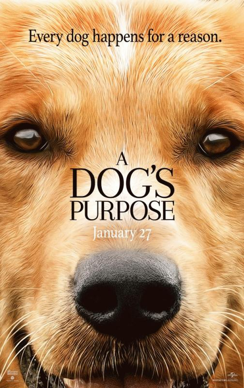 """A promo photo for the movie """"A Dog's Purpose."""""""